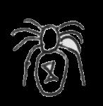bw spider 1