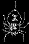 bw spider 2